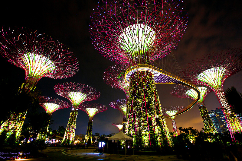 plain garden by the bay night supertrees south inside inspiration - Garden By The Bay At Night