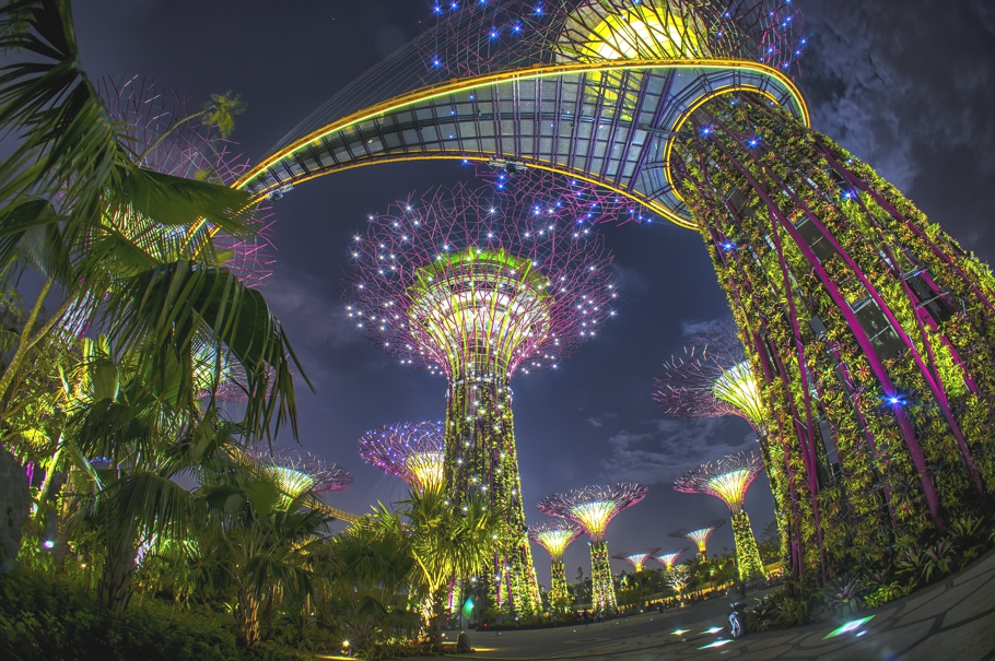 Garden By The Bay Singapore Gallery Of Holiday Photos